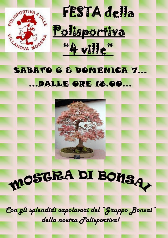 2013 07 06 07 volantino festa pol mostra bonsai OK_1